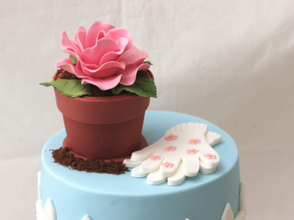 Cakes_and_More_2646